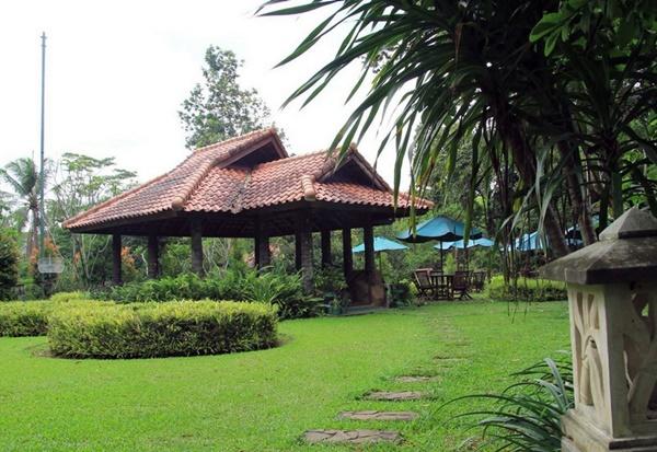 Hotel Murah di Bogor CICO Resort