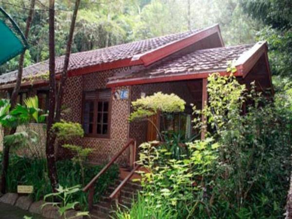 Hotel Murah di Puncak Pass